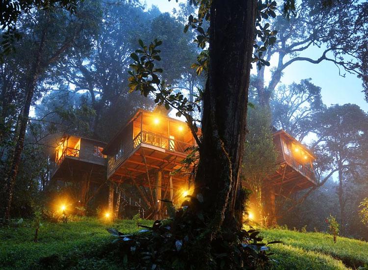 Nature Zone Resort Munnar