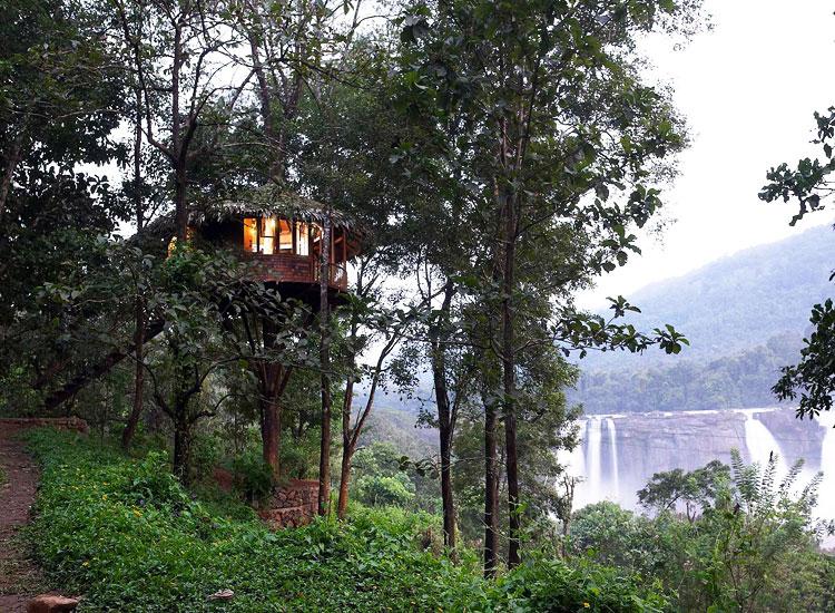 Rainforest Athirapally