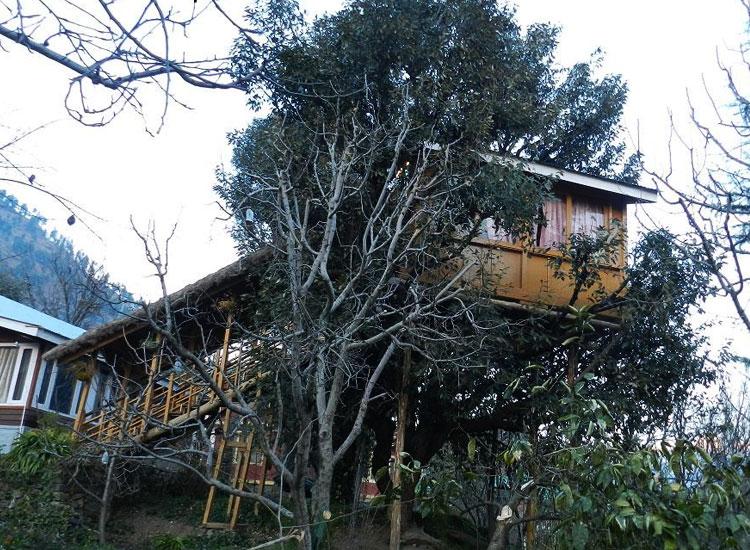 TreeHouse Cottages Manali