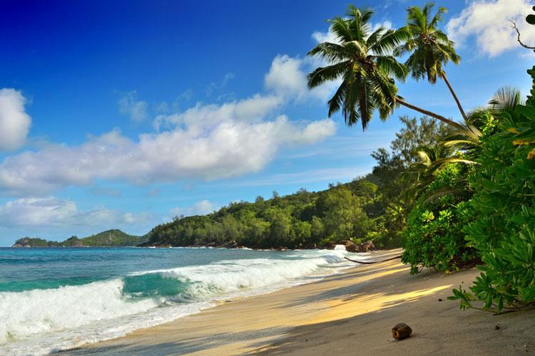 Pondicherry honeymoon