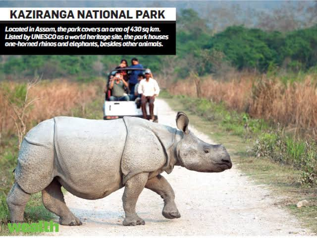 kaziranaga national park: place to visit in india in winter in assam