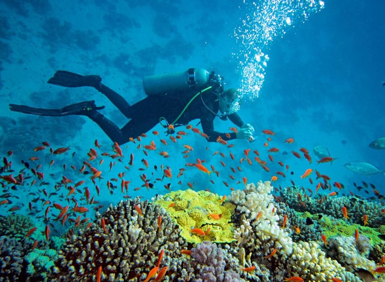 scube diving in port blair- places to visit in winter in india