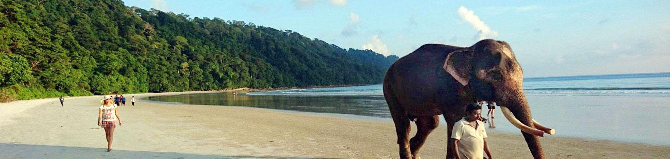 Andaman Nicobar Tour Packages