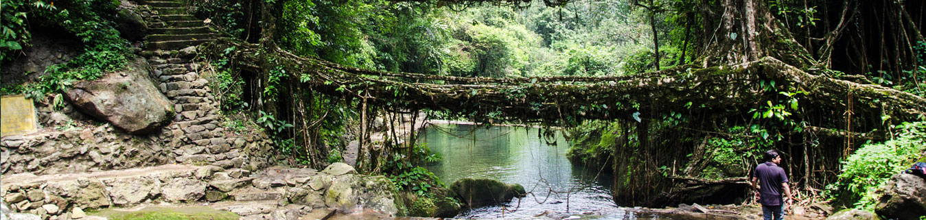 Shillong Tour Packages