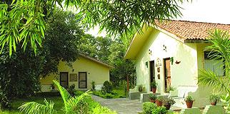 Jungle Lodge Bandhavgarh National Park