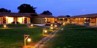 Asiatic lion lodge, Gir