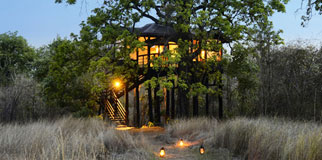 Pugdundee Safaris Pench Tree Lodge