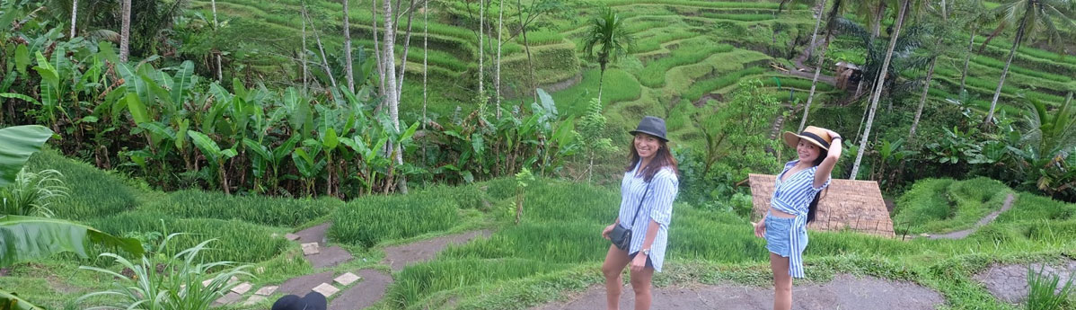 rice-terraces-of-tegallalong
