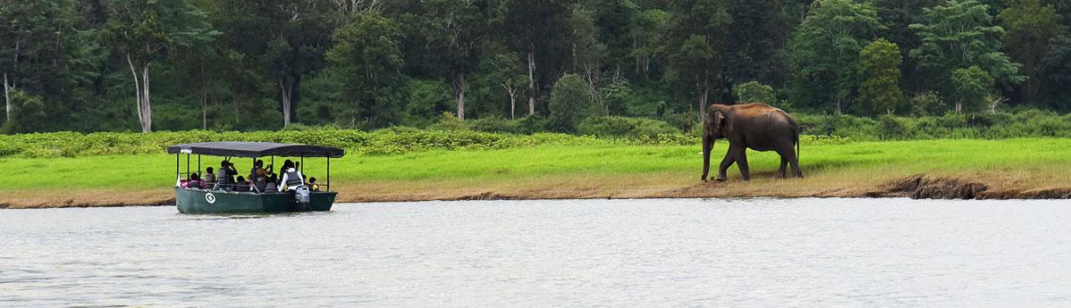 kabini-national-park-safari