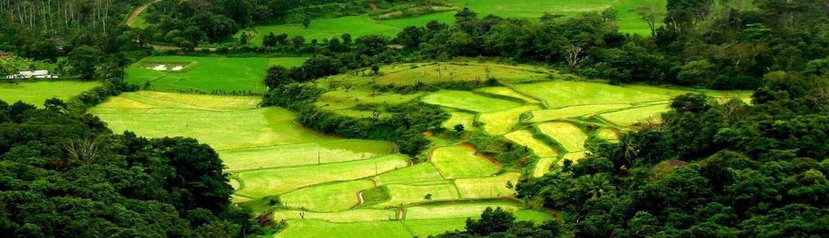 landscape-of-Coorg