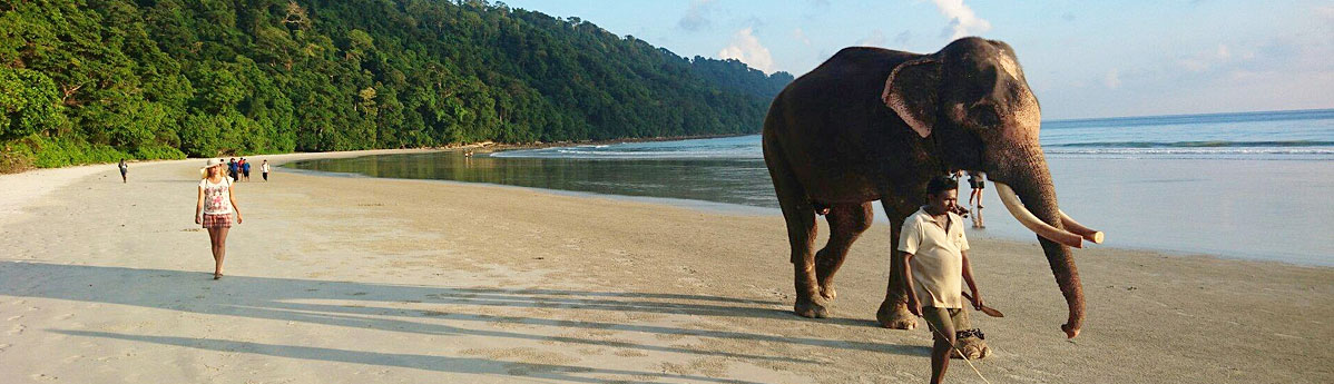 elephant-beach, andaman