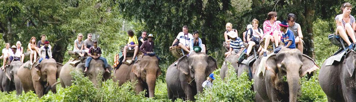 wildlife-safaris, goa