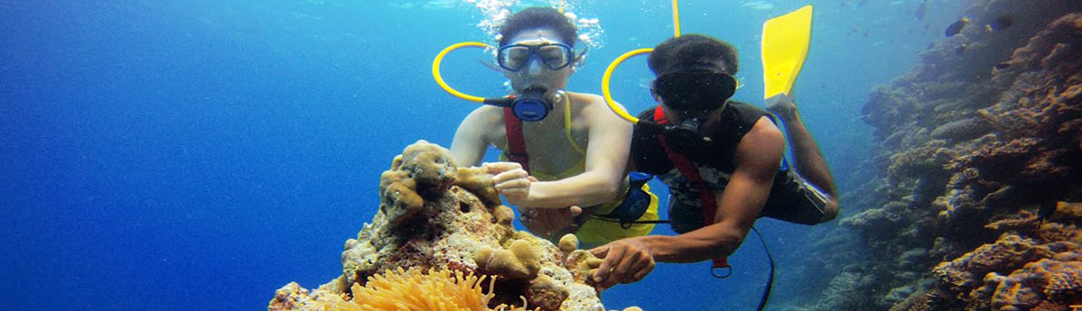 snorkeling-activity