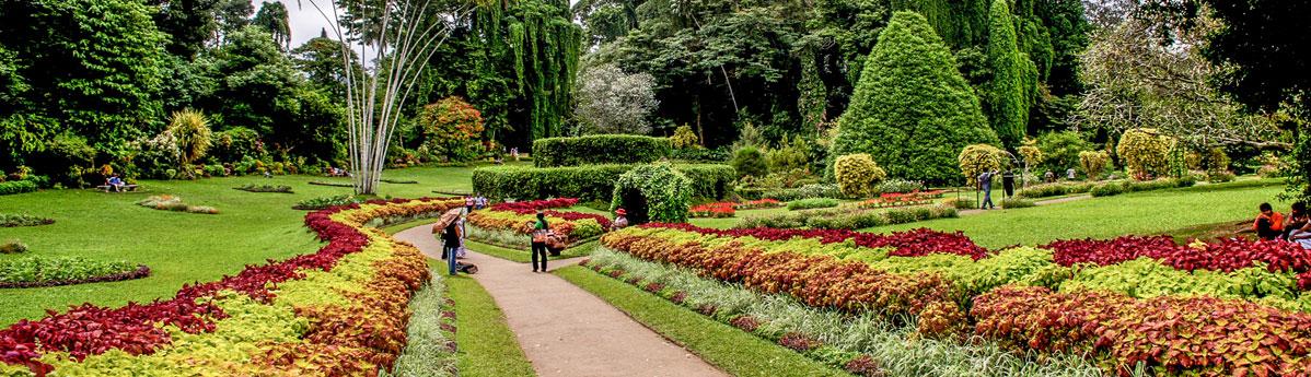 botanical-gardens-in-kandy