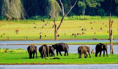 Delightful Coorg with Kabini