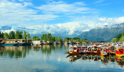 Kashmir Magic