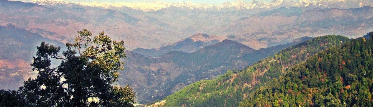 Bakrota Hills Dalhousie