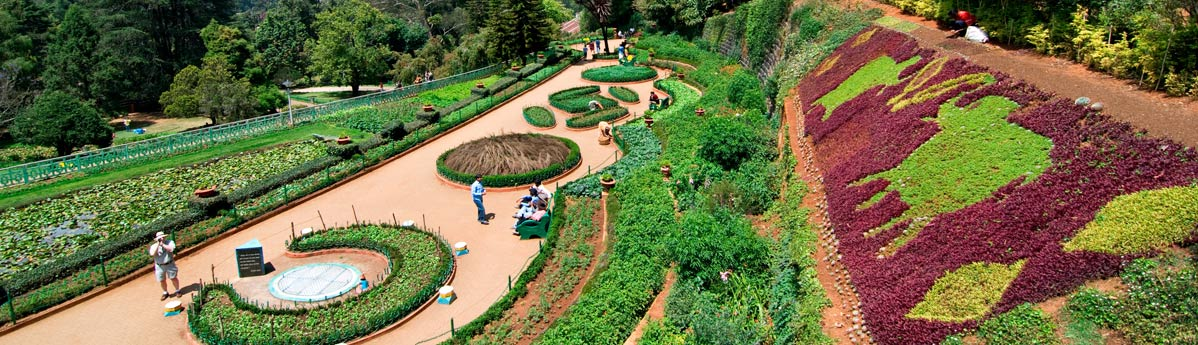 Botanical Gardens in Ooty