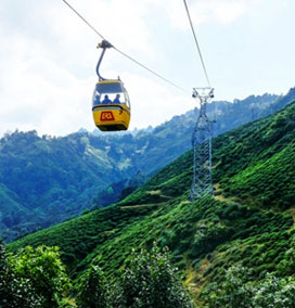 Cable Car, Darjeeling
