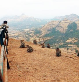 Monkey Point, Matheran
