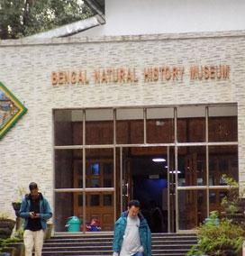 Natural History Museum, Darjeeling