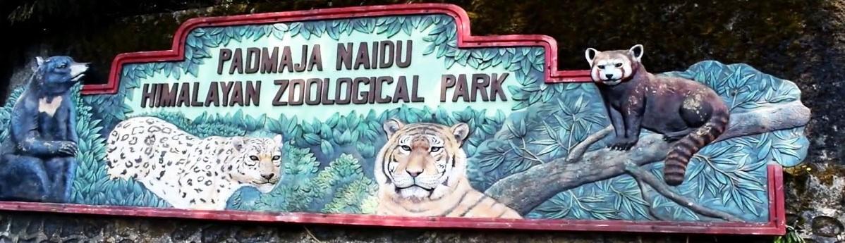 Padmaja Naidu Zoological Park, Darjeeling