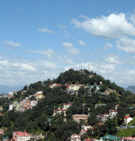 Prospect Hill, Shimla