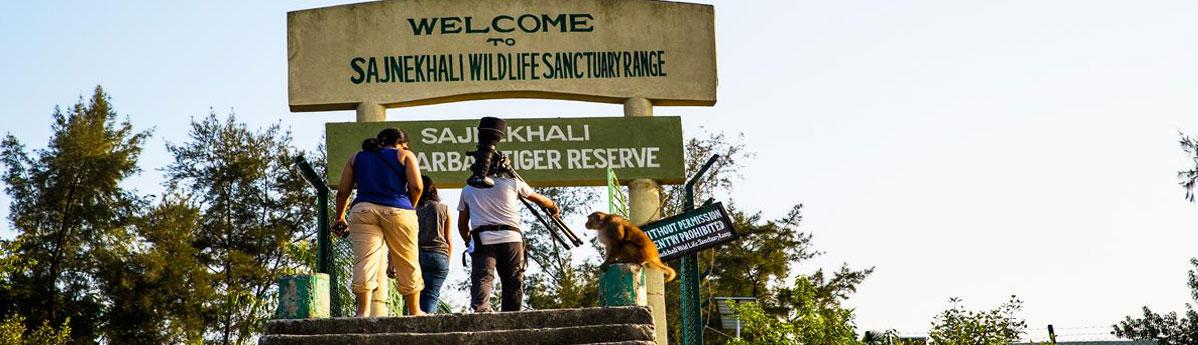 Sajnekhali Bird Sanctuary, Sunderbans