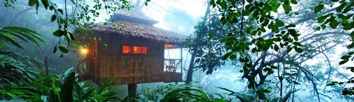 Treehouse Stay, Munnar