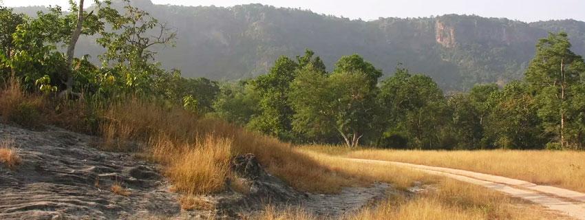 bandhavgarh-national-park-11