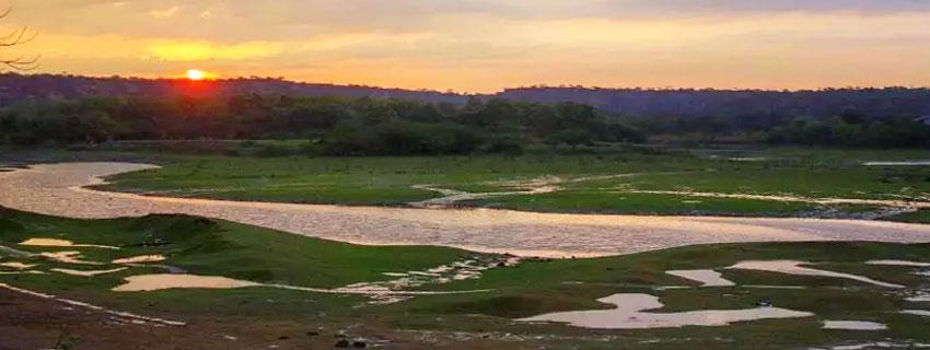 Sultanpur-Bird-Sanctuary